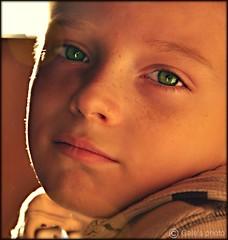 Practicing portraits.... (Gale's Photographs) Tags: portrait green eyes nikon aaron greeneyes grandson d90 nikond90 18105vr