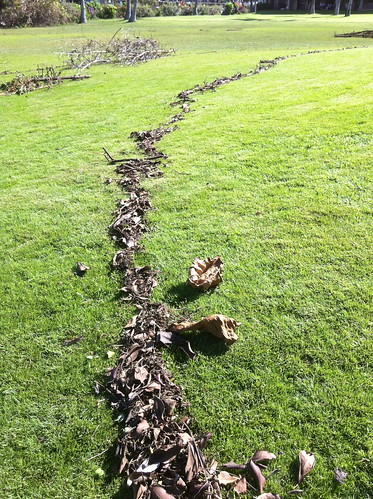 Andy Goldsworthy Inspired Tsunami Art