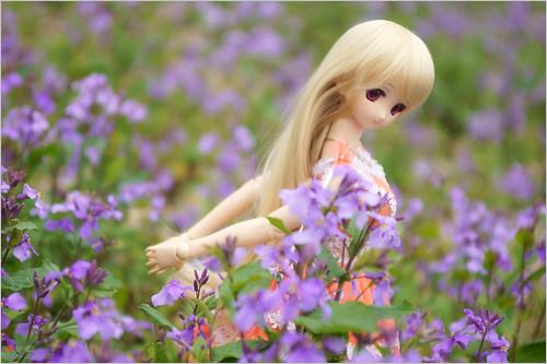 DSC04818 by leafsama
