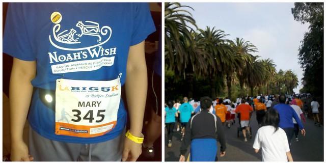 LA Marathon 5K