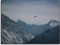 Up and away ..... (ruschi_e) Tags: schnee sky snow mountains alps schweiz switzerland himmel berge alpen paraglider gleitschirm hasliberg platinumheartaward ruschie