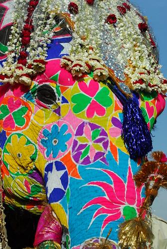 Jaipur Day 1 225