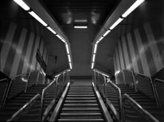645 métro marseille 016 (effixe) Tags: blackandwhite bw rollei underground marseille 645 noiretblanc métro rodinal 45mm 1100 mamyia645 standdev