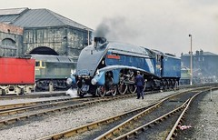 A4 Class 4-6-2 Pacific No. 4498 'Sir Nigel Gresley' At Gateshead Depot (52A) - 'Steam Safari' Railtour - 17th June 1972 (allan5819 (Allan McKever)) Tags: uk england heritage train pacific rail railway loco steam gateshead special depot locomotive preserved railtour a4 northeast tyneside excursion mpd tyneandwear lner 4498 uksteam sirnigelgresley 60007 steamsafari