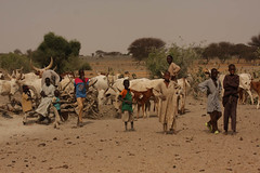 West Africa-5382