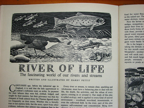 eagle annual river of life