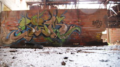 SeM#RainninGDaY (SeM #FeatherboY) Tags: wild green art rain wall painting graffiti montana paint artist tag letters pluie style can spray peinture brique sem letter graff aerosol mur bombing spraycan wildstyle lettrage