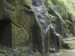P9270069 (tonkonogov) Tags: indonesia bali ubud