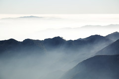 Above The Clouds (rcollins42) Tags: clouds fog sky mountains angelesforest angeles nationalgeographic national forest los california 5dmarkiii reid collins photography travel altitude up high hiking hike explore captureca trees peak above
