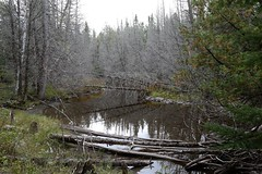 20160924_009_temiscouata_le_parc_riviere_sutherland (lindy_scuba) Tags: canada lakes park quebec temiscouata
