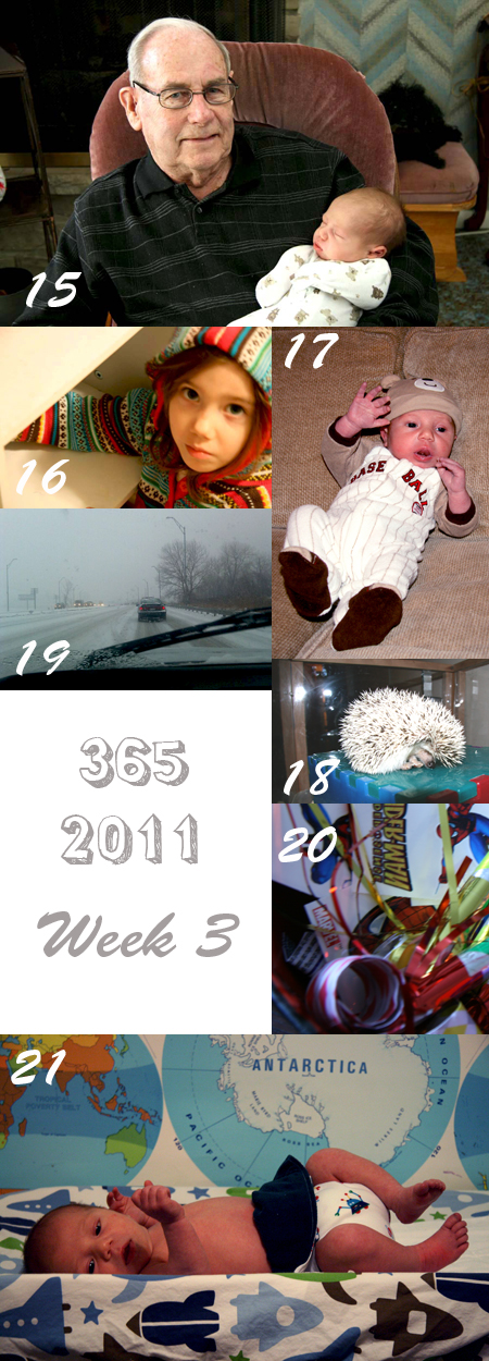 365 2011 Week 3