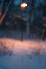 Too much vodka? (Enhanced Reality) Tags: winter light snow dark blurry nikon december fuzzy dusk poland polska 2010 pologne 50mmf18 d90 strzegom lowersilesia