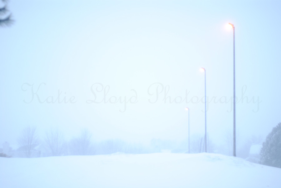 ligh-poles-in-blizzard-wm