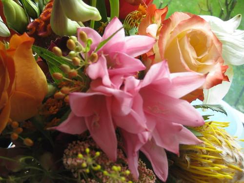 Angefragt: von der Floristenwerkstatt in Sülz