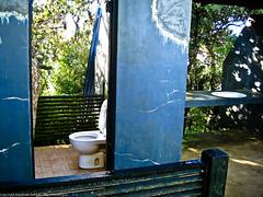 Туалет в джунглях