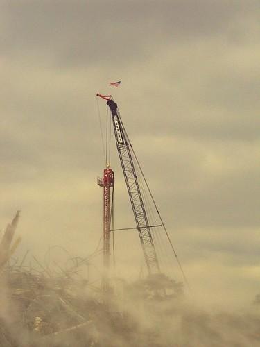 crane edited