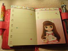 Alice inspired Journal 1