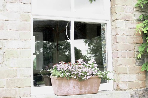 Cottage Window Box