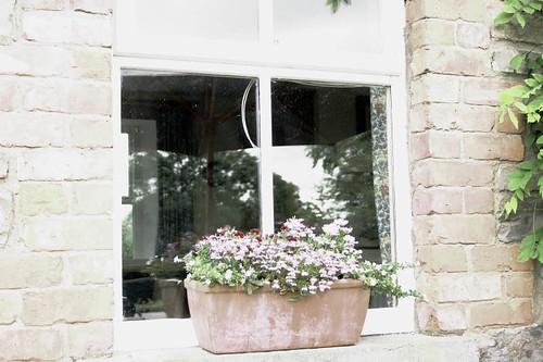 Cottage Window Box
