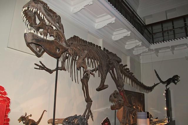 Dinosaurs Sydney