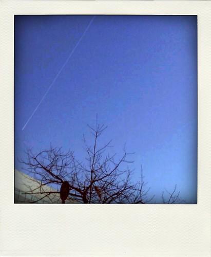 got the blues by anitam.com