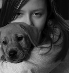cody and kirsty b&w (Kayleigh McCallum) Tags: uk boy red people dog pets cute nature animal portraits puppy photography scotland blackwhite nikon labrador fox cody mammals kirsty 2011 foxredlabrador