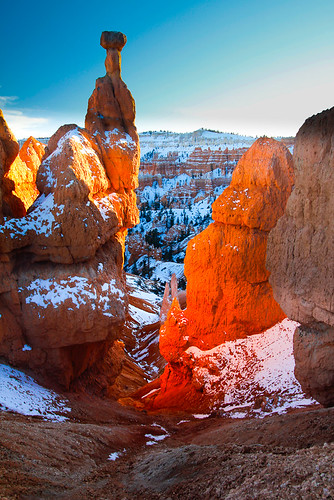 Bryce National Park in the snow-18.jpg