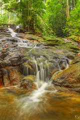 Nature's gift (tlchua99) Tags: forest waterfall stream hdr frim photomatix 550d forestresearchinstituteofmalaysia