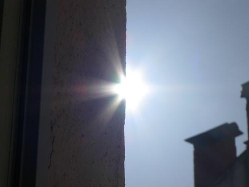 springy sunshine