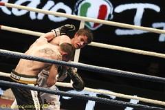 valentino-17 (Cesana Donato) Tags: sport moscow milano bears boxing rosi thunder valentino boxe damiani palasharp domenicovalentino