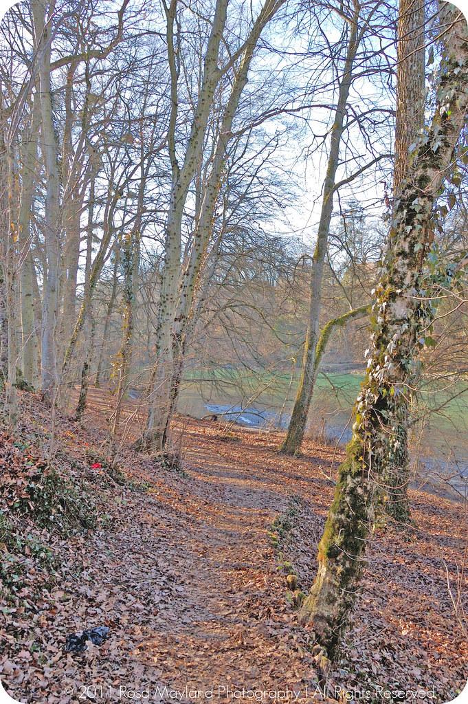 Woods Arve 1.3 bis