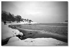 walking the dog (May Elin Aunli) Tags: winter norway norge vinter storesand grimstad fevik flickraward flickraward5 mayelincom