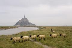 Mont Saint-Michel (tomosang R32m) Tags: france saint michel mont
