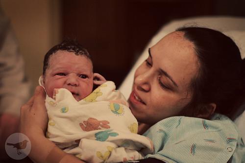 Gideon's Birth 601