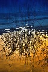 Reflection (Theophilos) Tags: sunset lake reflection tree nature greece crete brances kournas κρήτη ελλάδα φύση λίμνη δέντρο δύση αντανάκλαση κουρνάσ κλαδιά