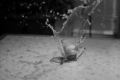 Splash (twistyshrimp) Tags: cup wet kitchen coffee counter drink worktop splash liquid cookiesplash