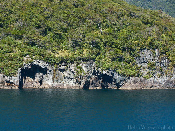 Fiordland-243