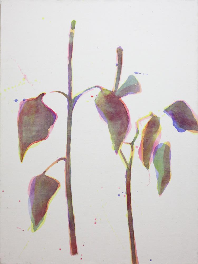 Daniel Balabán, Rostliny [Plants], 1996