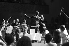 Maestro - Freedom (Jack Venancio) Tags: brazil blackandwhite bw music brasil jack nikon pb event orchestra musica evento orquestra venancio d90 petroebranco nikond90 jackvenancio