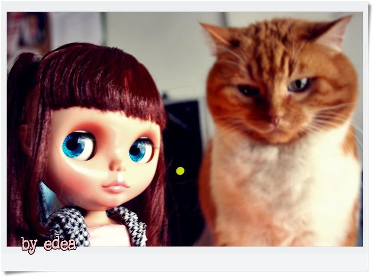 b00d296f5 Lilith mira a Wilhelmina... (edea44) Tags: cat gato gata blythe