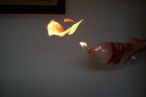 F.P: phoenix