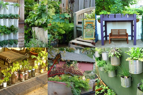 5 Unique Vegetable Gardens