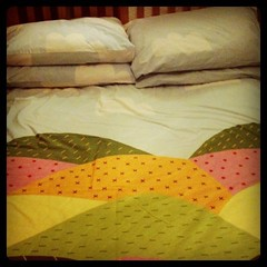 The best bed sheets in the world! by nikki m