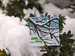 Blanketed in Inspiration (jms artist) Tags: snowflake blue winter white snow cold tree spring branches snowybranches minimasterpiece jmsartisticdimensions jansaunders playinpaint blanketedininspirations