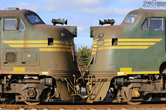 Australian Bulldogs A79 & A78. (Australian Trains) Tags: railroad train photography track power diesel photos steel transport australian tracks engine rail railway loco trains victoria class corey transportation vic locomotive standard gibson railways gauge freight locomotives railroads a79 railpage a78 rpauvicaclass rpauvicaclassa78 rpauvicaclassa79 railpage:loco=a78 railpage:class=30 railpage:loco=a79 railpage:livery=21