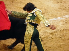 Pase (gavi_na) Tags: espaa valencia spain toros tradicin torero tauromaquia bous