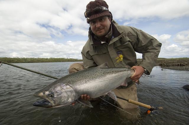 kenectok salmon fishing