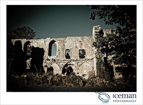 Jervaulx Abbey 032