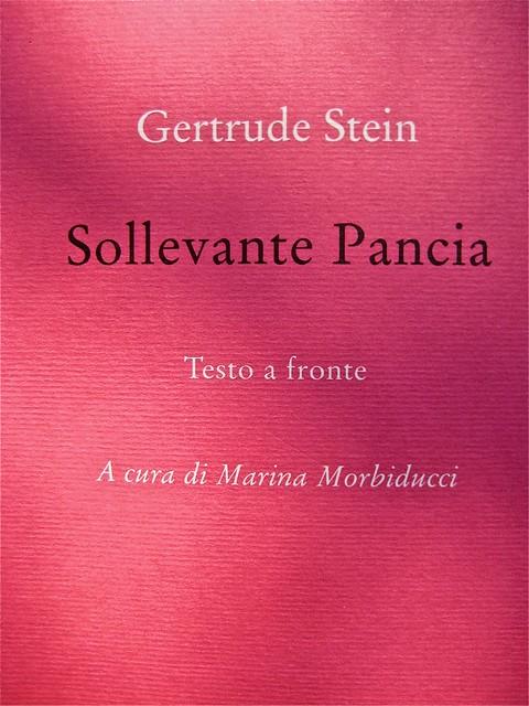 Gertrude Stein, Sollevante pancia, liberilibri 2011, [responsabilità grafiche non indicate]; copertina (part.), 2
