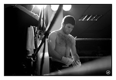 20110326_FREE-FIGHT_0273 (Dresseur d'images) Tags: freefight sportloisirs